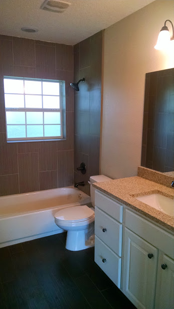 new hall bath pic
