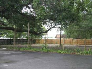 065444_celery-parking-lot2