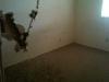 photo2_94072
